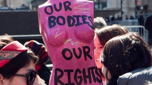 A pink painted female mannequin at a Planned Parenthood rally Feb. 2011 (Photo/David Bledsoe via Flickr)
