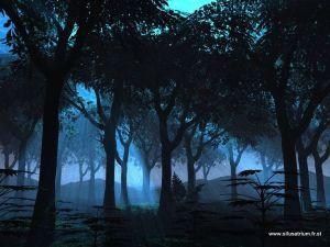 Night walk in moonlight